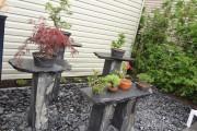 PIÉDESTAL en ardoise        Magnifiquement mis en valeur, ces bonsaïs font la fierté de son propriétaire.