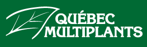 quebec-multiplants